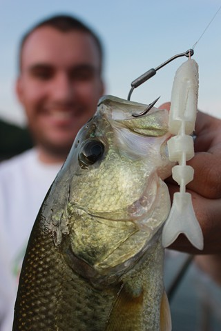 Lake Fork Trophy Lures Swimbait Hooks