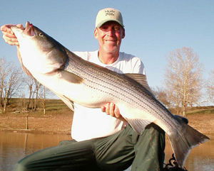 Brad Wiegmann with a healthy Beaver Lake Striper