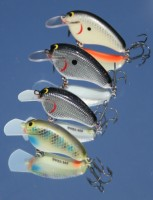 Buckeye Lake Bait Company Foil Finish