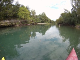One Eyed Willy S Canoe Kayak And Campground